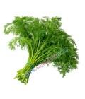 سبزی پلو نیم کیلویی تازه