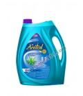 مایع ظرفشویی آنیتال 4 لیتر دریایی - آبی